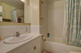 Photo 13: 11711 40 Avenue in Edmonton: Zone 16 House for sale : MLS®# E4247223