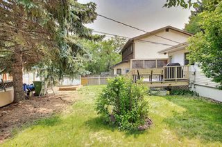 Photo 36: 420 Thornhill Place NW in Calgary: Thorncliffe Detached for sale : MLS®# A1146639