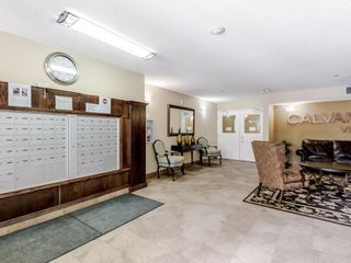 Photo 30: 2113 5200 44 Avenue NE in Calgary: Whitehorn Apartment for sale : MLS®# A1093257