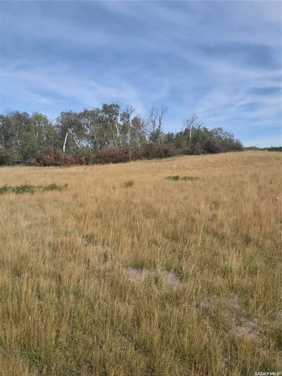 Main Photo: R.M. OF DUNDURN #314 LOT 20 in Dundurn: Lot/Land for sale : MLS®# SK871227