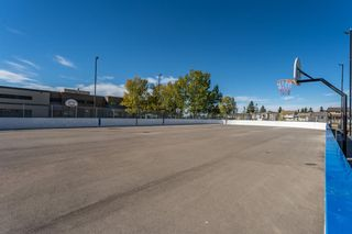 Photo 34: 5219 Whitehorn Drive NE in Calgary: Whitehorn Detached for sale : MLS®# A1149729