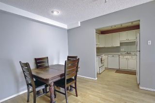 Photo 8: 303 9131 99 Street in Edmonton: Zone 15 Condo for sale : MLS®# E4252919