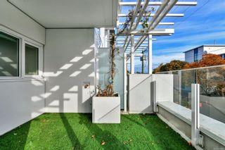 Photo 10: 301 1090 Johnson St in : Vi Downtown Condo for sale (Victoria)  : MLS®# 866462