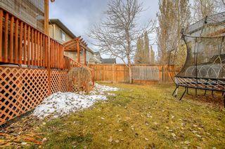 Photo 39: 230 Auburn Bay Boulevard SE in Calgary: Auburn Bay Detached for sale : MLS®# A1045900