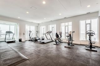Photo 44: 1008 901 10 Avenue SW: Calgary Apartment for sale : MLS®# A1116174