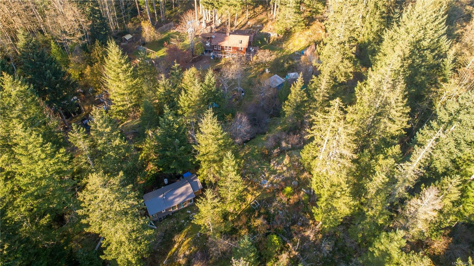 Bold Point home and two cabins on 5 acres!