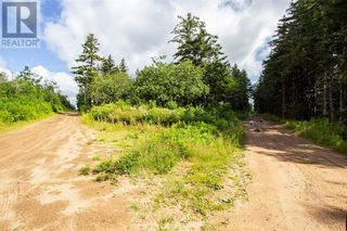 Photo 12: Lots Brooklyn RD in Midgic: Vacant Land for sale : MLS®# M136510