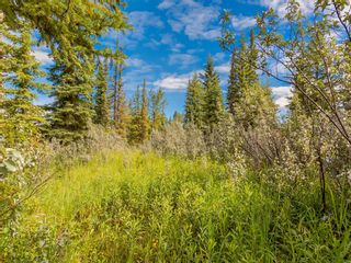 Photo 4: 20 34364 RANGE ROAD 42: Rural Mountain View County Land for sale : MLS®# A1017805