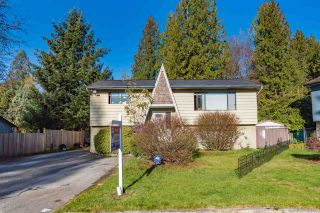 Photo 1: 20943 TANNER Place in Maple Ridge: Northwest Maple Ridge House for sale : MLS®# R2393313