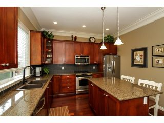 Photo 8: 6976 196A ST in Langley: Willoughby Heights House for sale : MLS®# F1420687