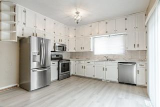 Photo 11: 42 STIRLING Road in Edmonton: Zone 27 House for sale : MLS®# E4252891