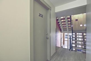 Photo 6: 202 1717 12 Street SW in Calgary: Lower Mount Royal Apartment for sale : MLS®# A1079434