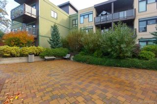 Photo 20: 205 982 McKenzie Ave in VICTORIA: SE Quadra Condo for sale (Saanich East)  : MLS®# 830856