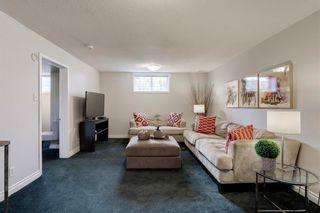 Photo 17: 3532 35 Avenue SW in Calgary: Rutland Park Detached for sale : MLS®# C4268473