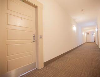 Photo 5: 407 1004 ROSENTHAL Boulevard in Edmonton: Zone 58 Condo for sale : MLS®# E4248881