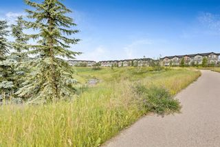 Photo 33: 8 NOLAN HILL Heights NW in Calgary: Nolan Hill Row/Townhouse for sale : MLS®# A1015765