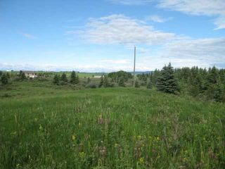 Photo 9: 12 KMS NORTH ON COCHRANE in COCHRANE: Rural Rocky View MD Rural Land for sale : MLS®# C3526638