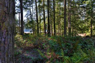Photo 23: 6111 SECHELT INLET Road in Sechelt: Sechelt District House for sale (Sunshine Coast)  : MLS®# R2557718