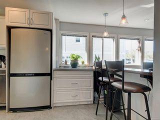 Photo 32: 147 Cambridge St in : Vi Fairfield West Multi Family for sale (Victoria)  : MLS®# 886819