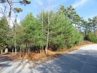 Main Photo: Glasgow Street in Shelburne: 407-Shelburne County Vacant Land for sale (South Shore)  : MLS®# 202100005
