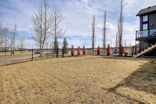 Photo 45: 107 Nolanshire Point NW in Calgary: Nolan Hill Detached for sale : MLS®# A1091457