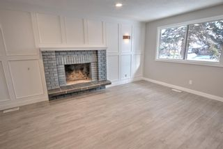 Photo 13: 547 Templeby Place NE in Calgary: Temple Detached for sale : MLS®# A1071164