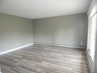 Photo 12:  in Edmonton: Zone 29 Condo for sale : MLS®# E4248069