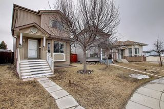 Main Photo: 27 Martin Crossing Grove NE in Calgary: Martindale Detached for sale : MLS®# A1092963