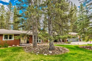 Photo 37: 48 Wolf Drive in Rural Rocky View County: Rural Rocky View MD Detached for sale : MLS®# A1126546