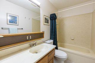 Photo 32: 6 WINDERMERE Crescent: St. Albert House for sale : MLS®# E4248081