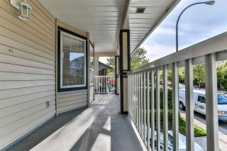 """Photo 31: 20508 67 Avenue in Langley: Willoughby Heights House for sale in """"Willow Ridge"""" : MLS®# R2574282"""