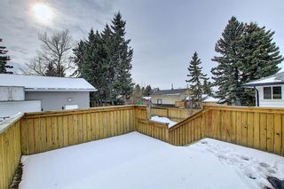 Photo 42: 429 1 Avenue NE: Airdrie Detached for sale : MLS®# A1071965