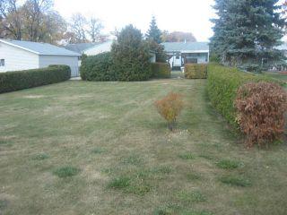 Photo 5: 102 Sadler Avenue in WINNIPEG: St Vital Residential for sale (South East Winnipeg)  : MLS®# 1220866