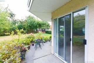 Photo 11: 103 3215 Rutledge St in VICTORIA: SE Quadra Condo for sale (Saanich East)  : MLS®# 685772