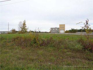 Photo 6: 3339 County Road 47 Road in Ramara: Rural Ramara Property for sale : MLS®# S3802737