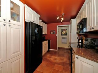 Photo 28: 877 Leslie Dr in VICTORIA: SE Swan Lake House for sale (Saanich East)  : MLS®# 597777