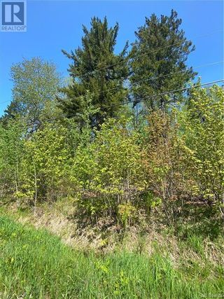 Photo 27: 5264 Rte 770 in Rollingdam: Vacant Land for sale : MLS®# NB058269
