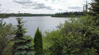Photo 14: 9 52215 RGE RD 24: Rural Parkland County Rural Land/Vacant Lot for sale : MLS®# E4248791