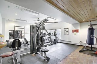Photo 29: 212 8604 48 Avenue NW in Calgary: Bowness Apartment for sale : MLS®# A1138571