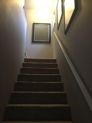 Photo 14: 61 30 Levasseur RD: St. Albert House Half Duplex for sale : MLS®# E4235142