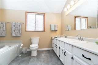 Photo 11: 27138 MELROSE RD 71N Road in Dugald: RM of Springfield Residential for sale (R04)  : MLS®# 1810851