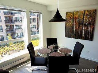 Photo 18: 317 517 Fisgard St in : Vi Downtown Condo for sale (Victoria)  : MLS®# 866508