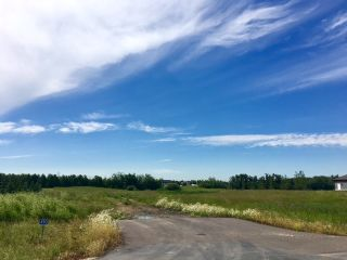 Photo 1: 490 50450 Range Road 234: Rural Leduc County Rural Land/Vacant Lot for sale : MLS®# E4208603