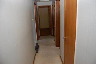 Photo 16: 4344 114 Street in Edmonton: Zone 16 House for sale : MLS®# E4252716