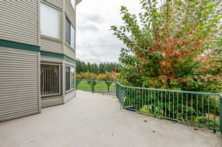 Photo 18: 120 2451 Gladwin in Abbotsford: Abbotsford West Condo for sale : MLS®# R2414045