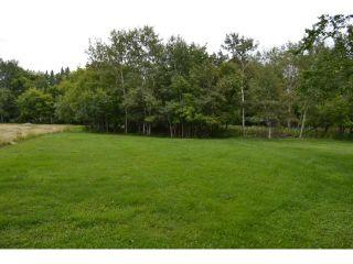 Photo 18: 591 Fairmont Road in WINNIPEG: Charleswood Residential for sale (South Winnipeg)  : MLS®# 1316410
