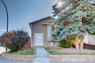 Main Photo: 136 Martinbrook Road NE in Calgary: Martindale Detached for sale : MLS®# A1155109