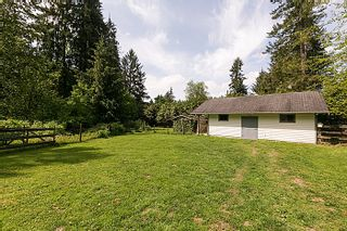 Photo 30: 25990 116TH Avenue in Maple Ridge: Websters Corners House for sale : MLS®# V1097441