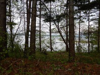 Photo 7: 2236 Highway 376 in Lyons Brook: 108-Rural Pictou County Residential for sale (Northern Region)  : MLS®# 202113317