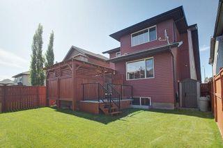 Photo 38: 40 AUTUMN Close SE in Calgary: Auburn Bay Detached for sale : MLS®# C4264321
